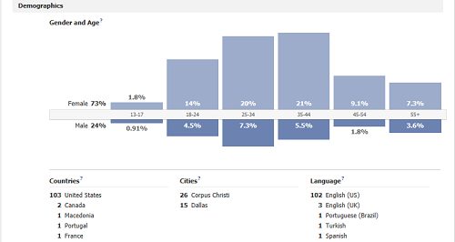 What Facebook Insights Says About Our San Diego Small Business