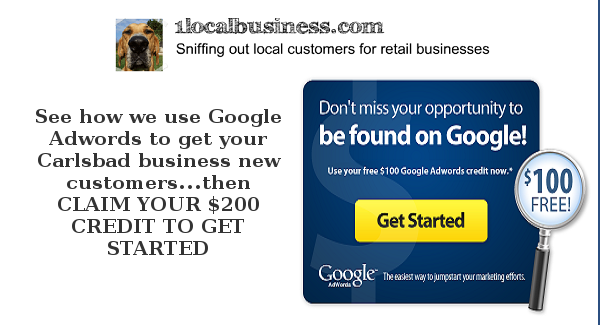 Get New Customers with Google Adwords Campaigns By 1LocalBusiness!